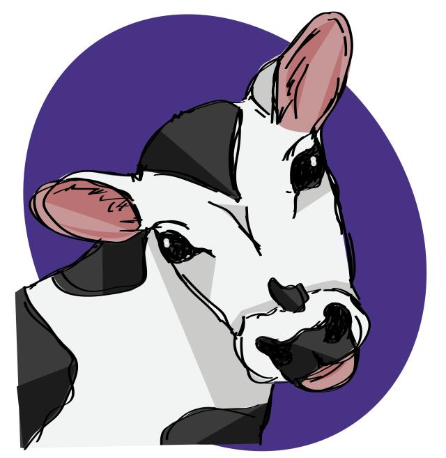 cow3-01