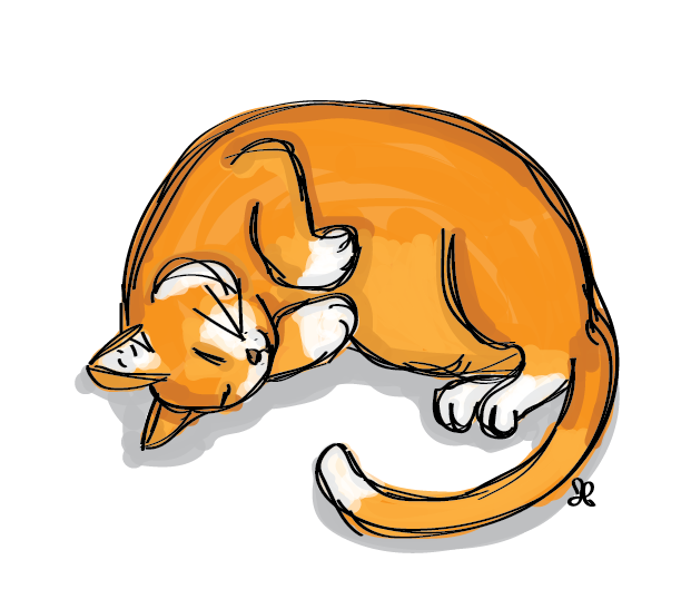Illustration of a sleeping orange cat with white paws.